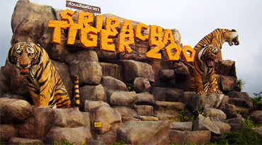 Sriracha Tiger Zoo (Ticket Only)