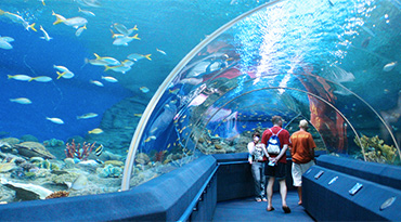 Underwater World Pattaya (half day)